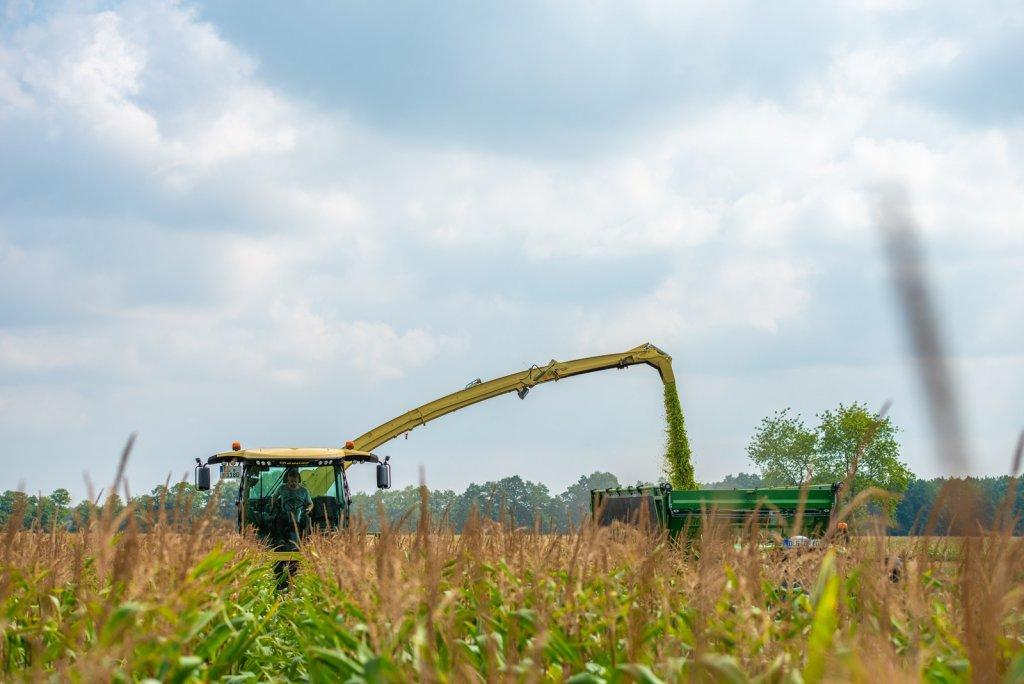 Výškově nastavitelná kabina přijde vhod při sklizni  čiroku nebo vysoké kukuřice apod.