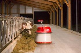 V dojivosti mléka patří Česko ke světové špičce, chovatelé častěji investují do automatizace a robotizace