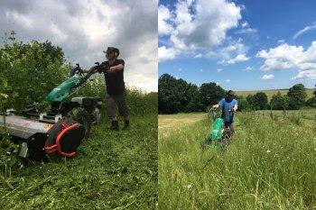 Při mulčování a sečení vzrostlé trávy na květinové farmě, zdroj foto - Pavel Měska